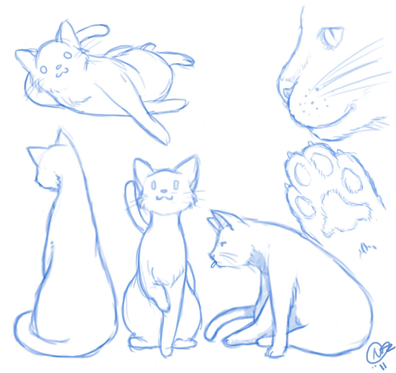 Cat sketches | Jellyfish Station